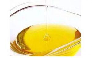 marine algae oil